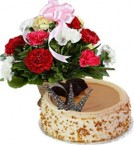 send Eggless Butterscotch Cake Half Kg n Carnations Basket delivery