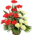 send Yellow Carnation Red Gerbera Bouquet delivery