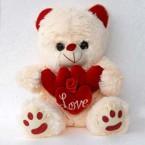 send So Soft Teddy delivery