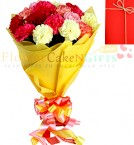 send bouquet of 10 mix carnations delivery