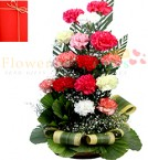 send 15 Mix Color Carnations in Basket delivery
