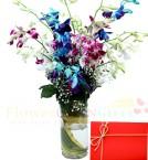 send 6 Mix Ochids in Medium Vase delivery