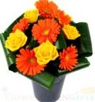 send Roses n Gerbera Flower delivery