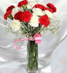 send Mix Carnations Flower delivery