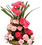 send Mix Carnations Bouquet delivery