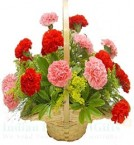 send Carnations Flower Basket delivery