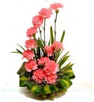 send Pink Carnations Flower Basket delivery