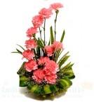 send Pink Carnations Flower Basket delivery
