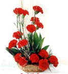send Red Carnations Flower bouquet delivery
