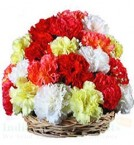 send 20 Carnations Flower arrangements delivery