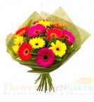 send 10 Gerberas Bouquet delivery