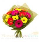 send 10 Gerberas Bouquet delivery