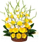 send Gerberas Flower basket delivery