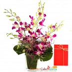send 6 purple orchid in a vase delivery