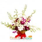 send 8 orchid flower basket delivery