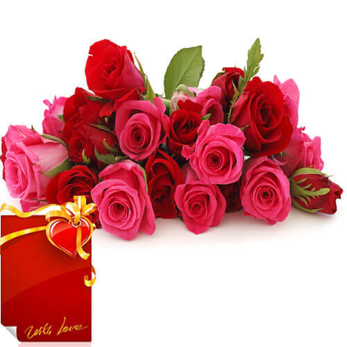 Bunch of 15 Red Pink Roses with Greeting Card