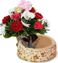 Eggless Butterscotch Cake Half Kg n Carnations Basket
