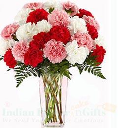 Carnations Flower Vase